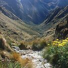 Inca Trail - Pathway to the mountains by Torchwood