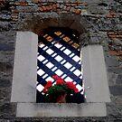 A Window with no Glass by Segalili