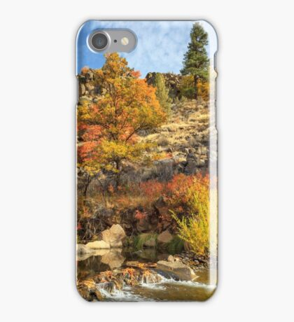 Autumn Waters Of The Susan River iPhone Case/Skin