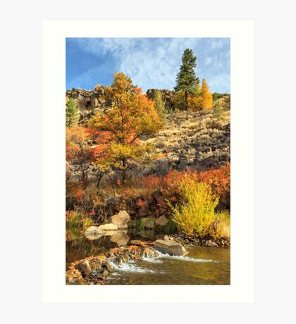 Autumn Waters Of The Susan River Art Print