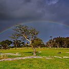 """Rainbow At The Rocks"" by Phil Thomson IPA"
