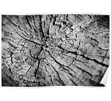 Old Texture Stump Poster