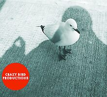 """Crazy Bird Production"", copywrite law Australia by Robert Phillips"
