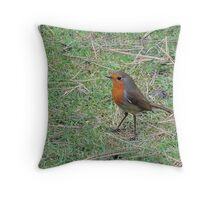 Robin Profile Throw Pillow