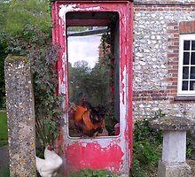 Phonebox queue by Judi Lion
