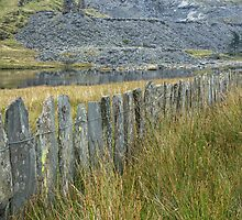A slate fence by Judi Lion