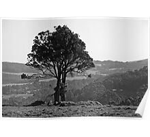 Rural Denmark in Black and White 2013 Poster