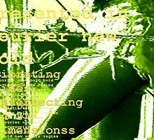 MANTIS_1 by Joshua Bell