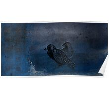 Two little crows blue sky dark night Poster