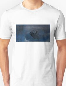 Two little crows blue sky dark night T-Shirt