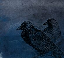 Two little crows blue sky dark night Sticker