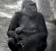 Gorilla Mother with Baby Greeting Card by NestToNest
