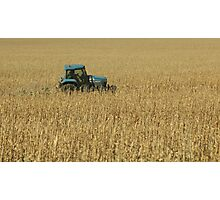 Harvest Time, Tractor on the Way Photographic Print