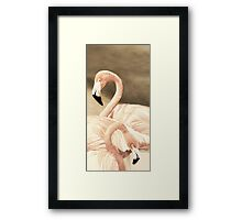Pink & Gray Dusted Framed Print