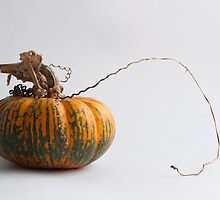 Farmers Market pumpkin 2014 -1 by BonnieJames