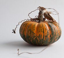 Farmers Market pumpkin 2014 -2 by BonnieJames