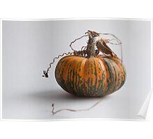 Farmers Market pumpkin 2014 -2 Poster