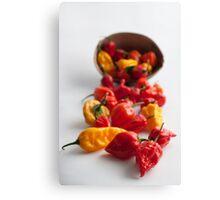 Spicy! Canvas Print