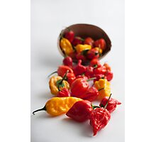Spicy! Photographic Print