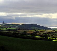 Scrabo Country View by Wrayzo