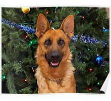 Isabelle at Christmas Poster