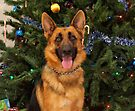 Kiera at Christmas by Sandy Keeton