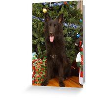 Phoenix at Christmas Greeting Card