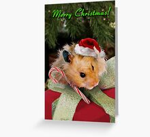 Merry Christmas Hamster Greeting Card