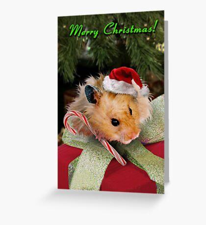 Merry Christmas Hamster Greeting Card