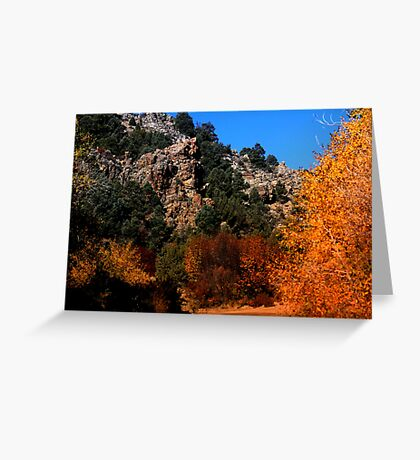 Cherry Creek Canyon Greeting Card