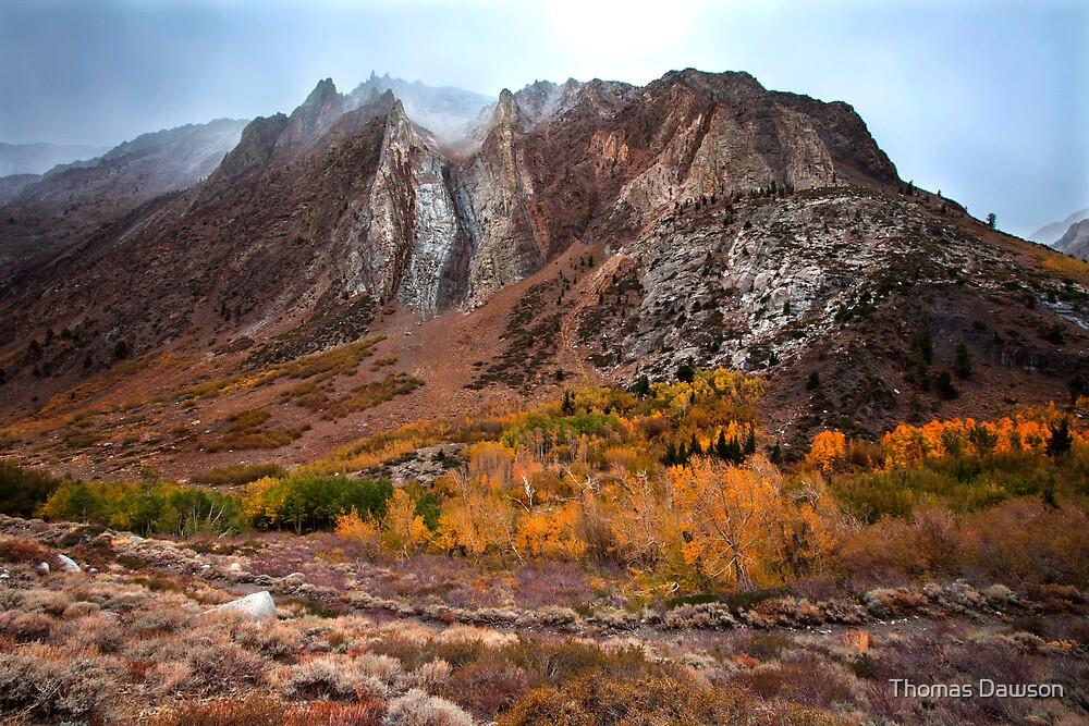 Sierra Mist by Thomas Dawson