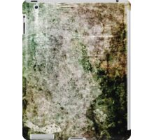 iPad Case Abstract Beautiful Stone Texture Cool Grunge iPad Case/Skin