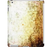 iPad Case Abstract Cool Grunge Beautiful Stone Texture iPad Case/Skin