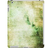 iPad Case Abstract Cool Green Grunge Beautiful Stone Texture iPad Case/Skin