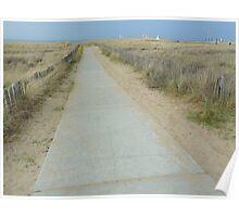 The dunes at Noordwijk (NL) Poster