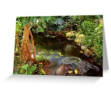 Butterfly House Fountain Greeting Card