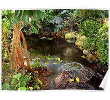 Butterfly House Fountain Poster