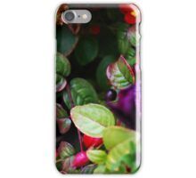 funky phone case yo iPhone Case/Skin