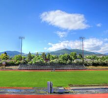 Vigilante Stadium Looking South by Sue Morgan