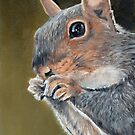 Squirrel Close-Up by Charlotte Yealey