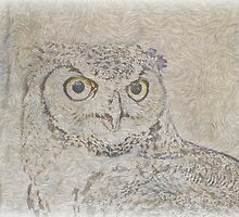 Wylie the owl by philw
