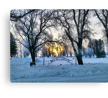 In the Dead of Winter Canvas Print