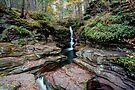 Adams Falls Under Golden Autumn Leaves by Gene Walls