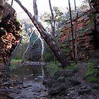 Alligator Gorge, Southern Flinders Ranges, South Australia by John Kleywegt