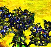 Garden flowers in the yellow sunlight by sebmcnulty