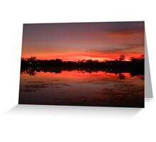 Lily Lagoon Sunset, Kununurra, Western Australia Greeting Card
