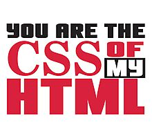 You are the CSS of my HTML Photographic Print