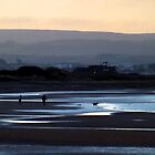 Dook At Dawn by Stuart  Fellowes