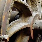 Tram Wheel by Stuart  Fellowes