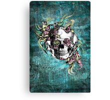 Grunge butterfly smoke skull Canvas Print